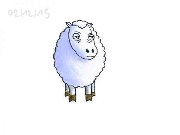 Sheep, 2015